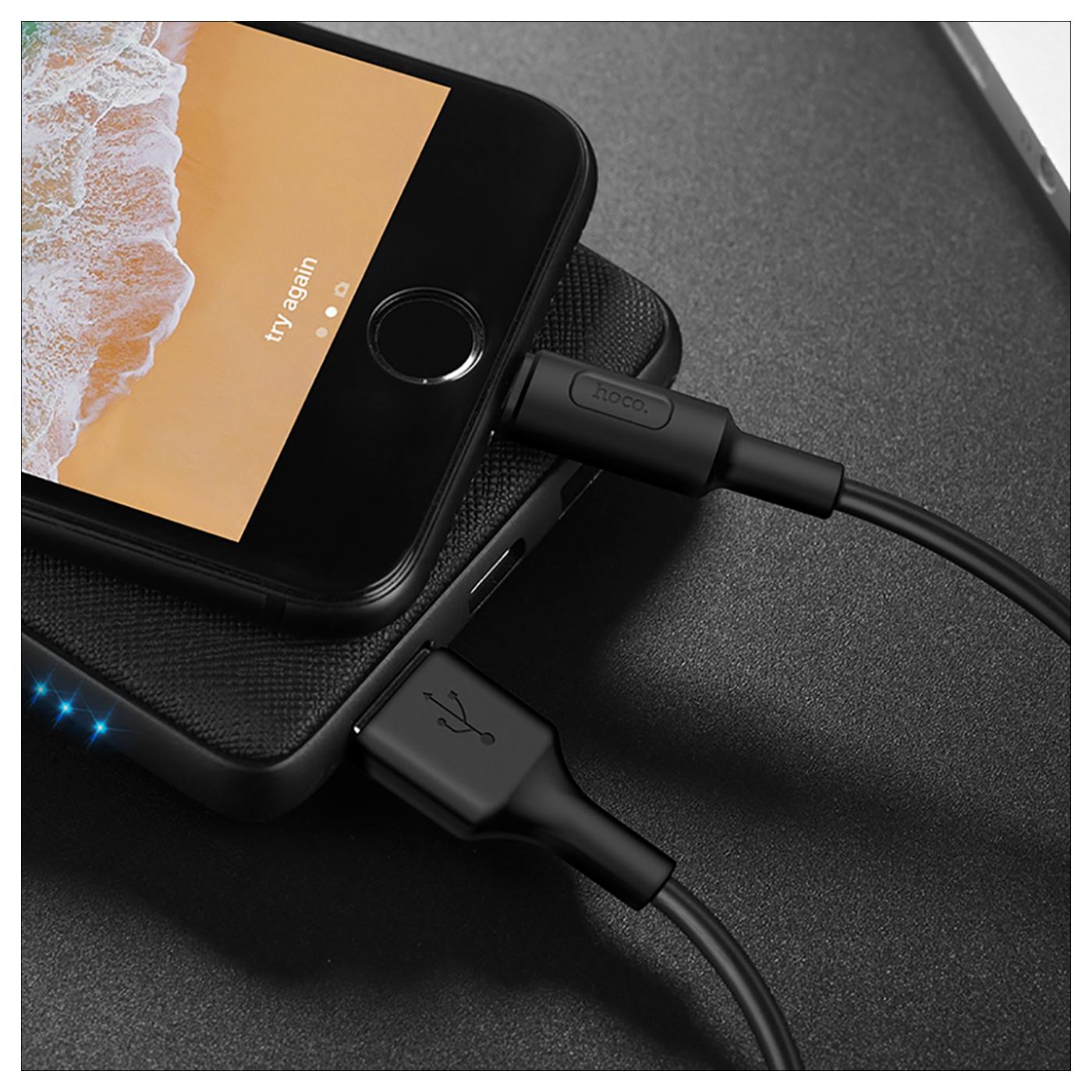 USB kabl za iPhone, Lightning kabl, 1 met., 2 A, crna