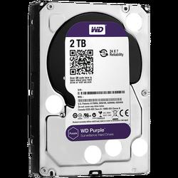 Hard disk 3,5 inch, 2TB, Caviar Purple, pog. za video nadzor