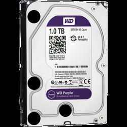 Hard disk 3,5 inch, 1TB, Caviar Purple, pog. za video nadzor