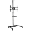 Transmedia - HP 105 L