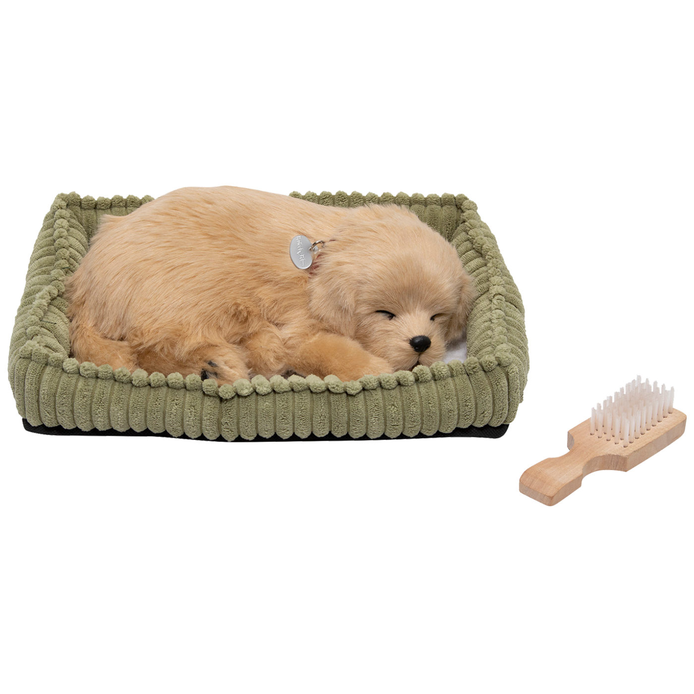 home - PP Golden Retriever