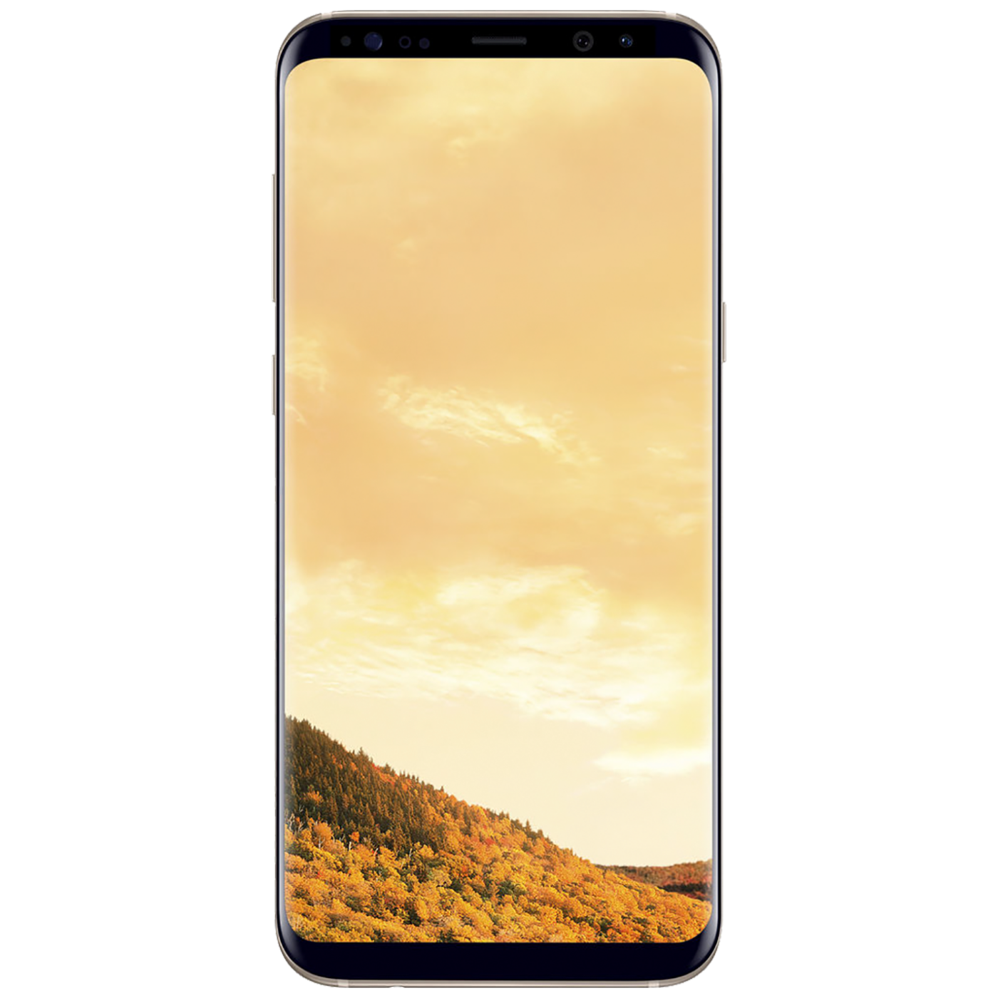 Galaxy S8 Plus Maple Gold
