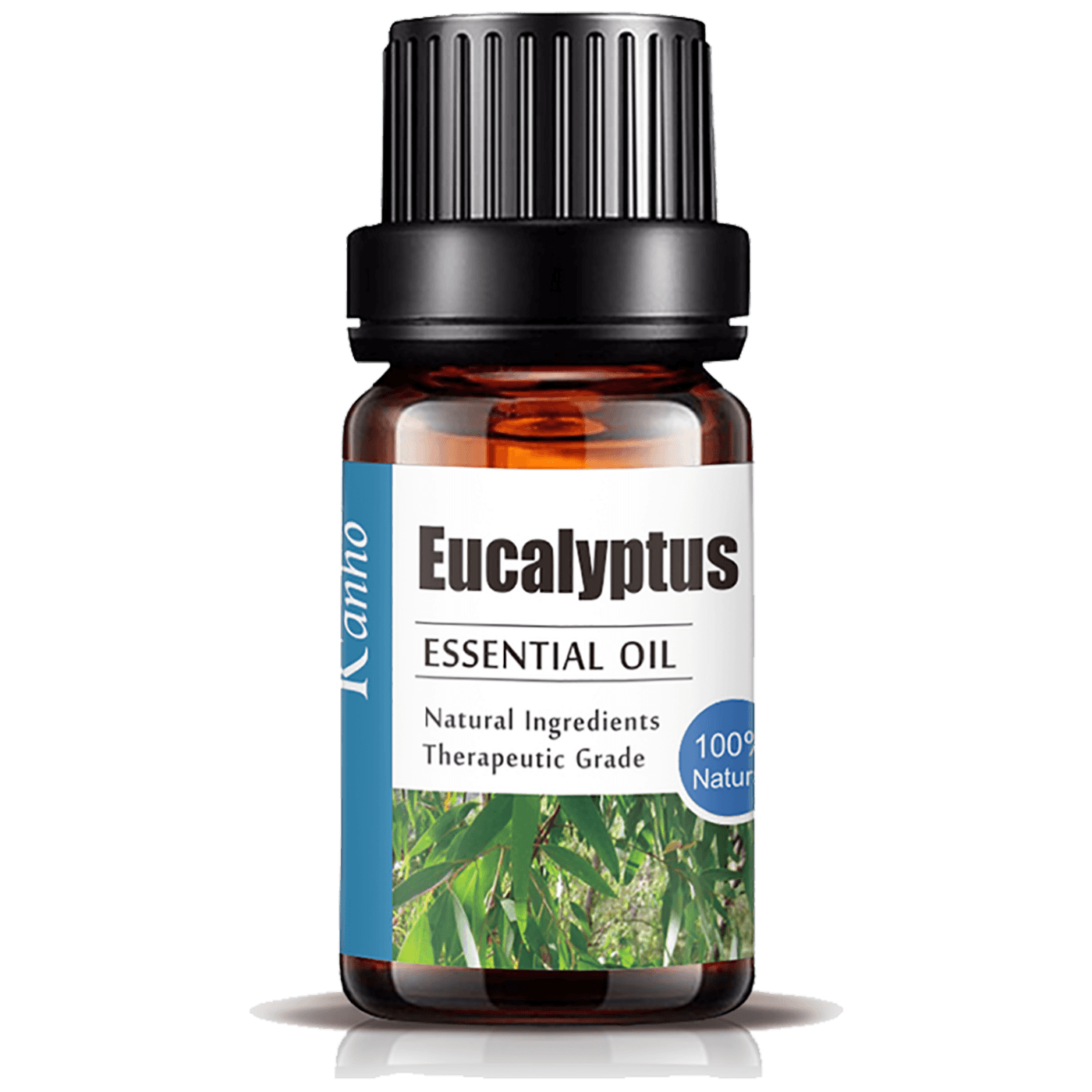 Eterično ulje, Eucalyptus, 10 ml