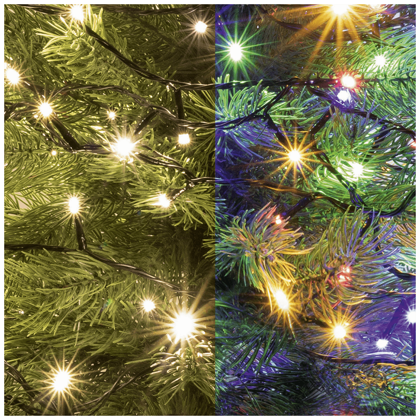 Dekorativna LED rasvjeta, 2u1
